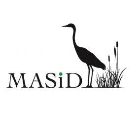 MASID